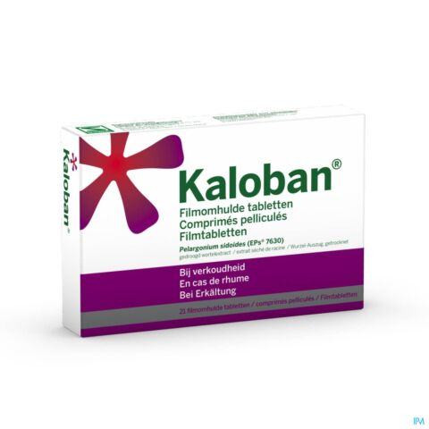 VSM Kaloban 21 Tabletten