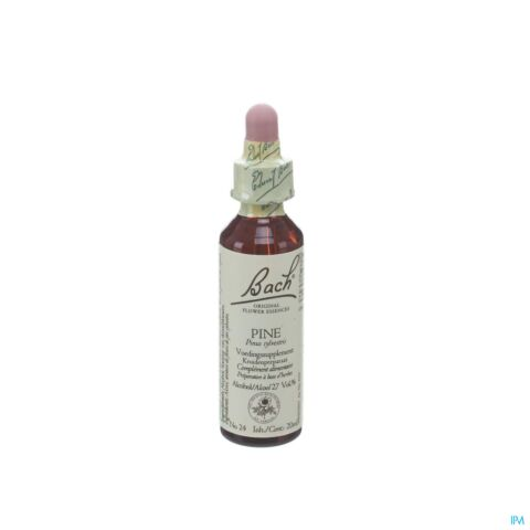 Bach Flower Pine 20ml